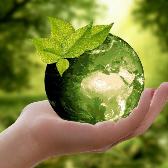 Travailler dans l'environnement